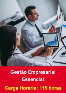 Gestão Empresarial Essencial